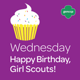 get in the spirit for 2014 girl scout week blog   girl