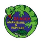 amphibians-and-reptiles