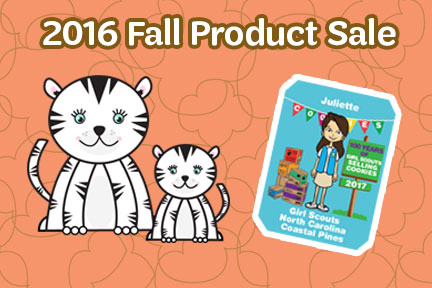 fall-product-sale-blog-graphics