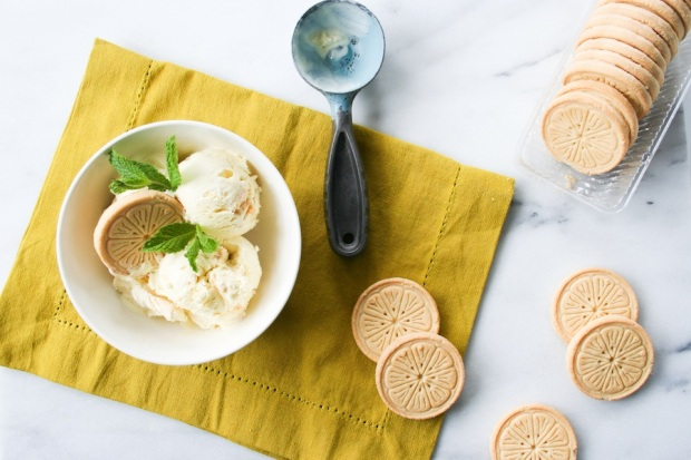 lemonades-girl-scout-cookies-ice-cream-recipe-legal-miss-sunshine-12-copy